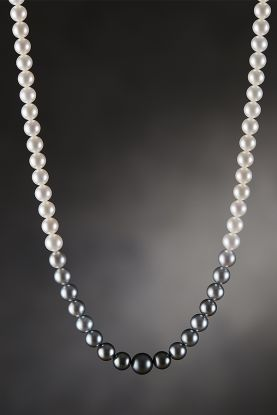 Tahitian & Freshwater Pearl Necklace